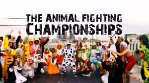 animalfighting